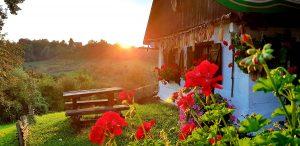 Zagorska hiža u cvijeću, autor: Jsenka Haleuš